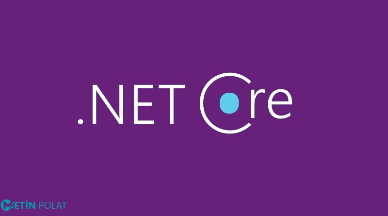 .net, yazılım geliştirme, software developer